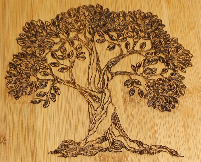 photo of engraving tree on wood
