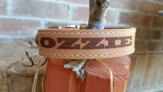 laser engraved leather collar