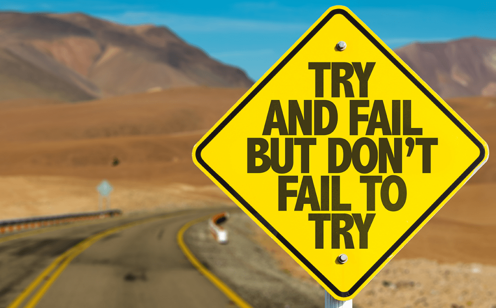 Try And Fail, But Don't Fail To Try